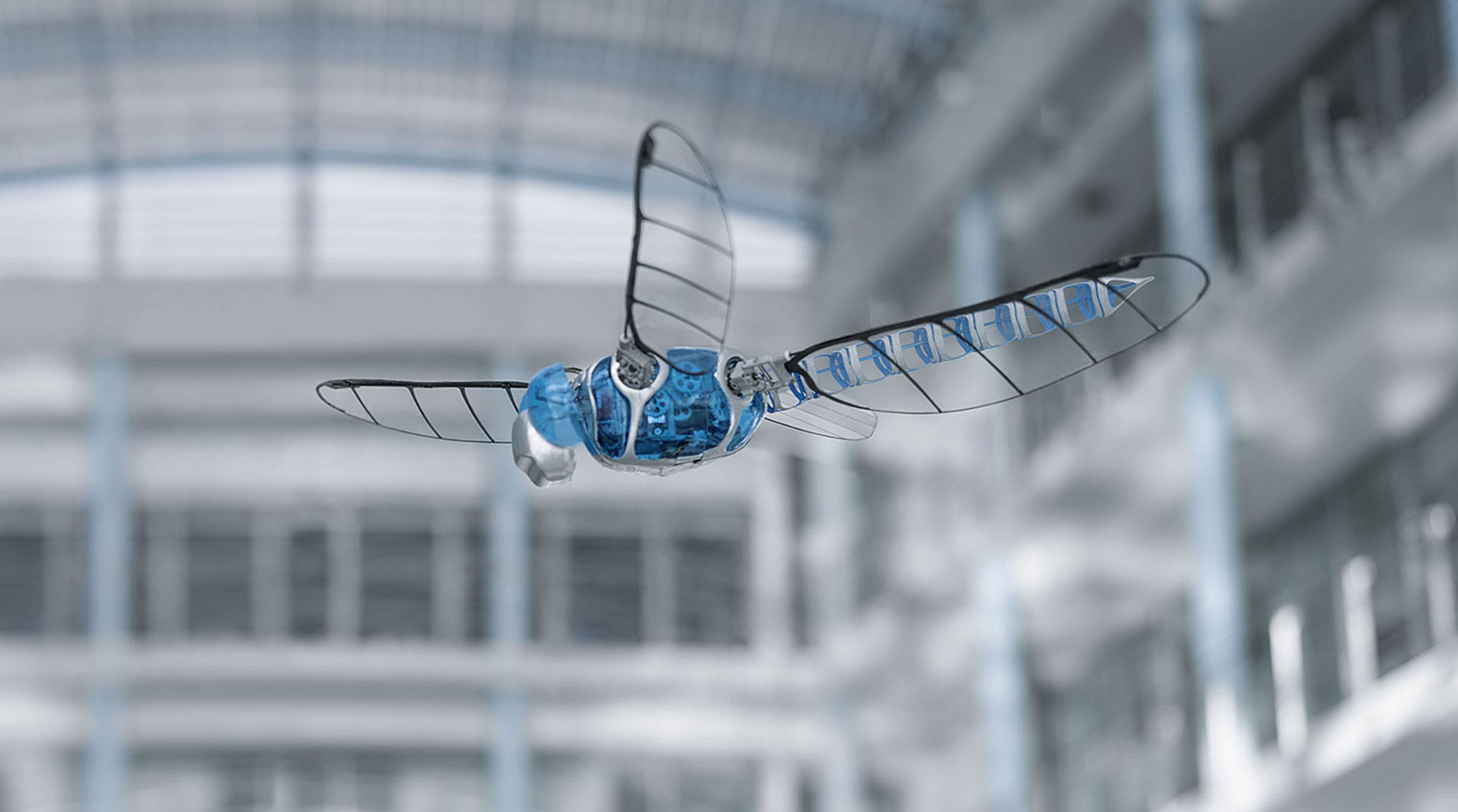 El extraño récord Guiness del insecto robótico volador más grande del mundo