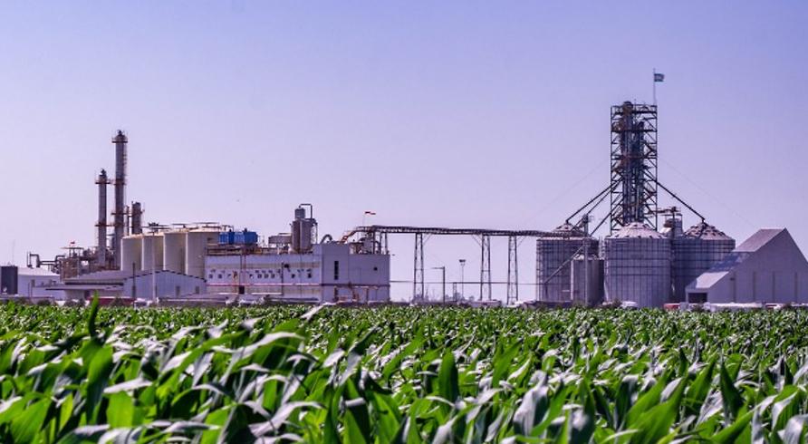 etanol:-el-sector-acusa-perdidas-millonarias-y-hay-plantas-que-pararian-desde-noviembre
