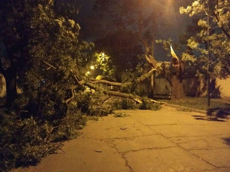 un-tornado-provoco-danos-y-voladura-de-techo-en-una-localidad-de-cruz-del-eje